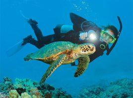 Alanya Scuba Diving 9