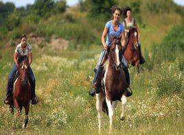 Alanya Horse Riding 1